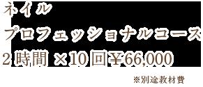 ネイル プロフェッショナルコース 3時間×30回¥279,000