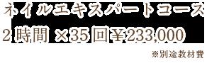 ネイルエキスパートコース 3時間×85回¥680,000